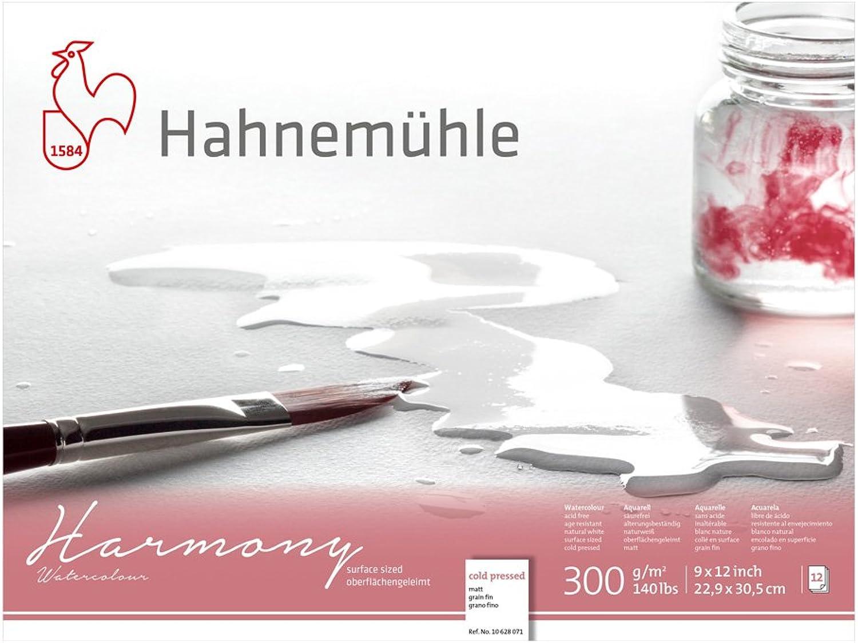 Hahnemuhle Harmony WaterFarbe Block Cold Pressed 9x12 Inches 12 Sheets B07CQ98XV2    Bestellungen Sind Willkommen