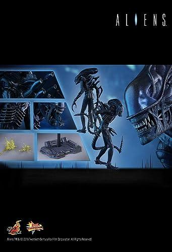 Compra calidad 100% autentica Hot Toys Toys Toys MMS354 - Aliens - Alien Warrior  ventas al por mayor