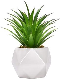 Artificial Succulent Plants, Artificial Aloe Agave Succulent Textured Aloe Fake Mini Succulent Plants Arrangement for Tabl...
