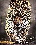 DIY 5D Diamante Pintura Leopardo amarillo animal simple Taladro redondo punto de cruz, bordado, artesanía para adultos, niños, para decoración del hogar