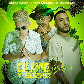 Cumbia & Gozadera (feat. TunMelody & SeguBaby)