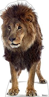 Best Advanced Graphics Lion Life Size Cardboard Cutout Standup Review