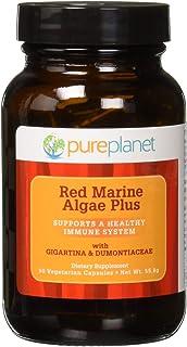 Pure Planet - Red Marine Algae Plus
