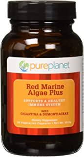 Pure Planet - Red Marine Algae Plus