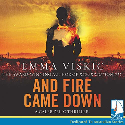 And Fire Came Down cover art
