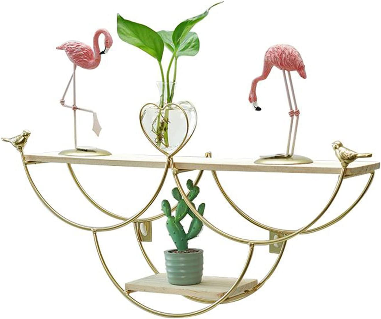 Shelves for Wall Decor Hanging Tucson Mall Mounted discount Floating She