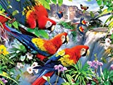 ZXXGA Kits de Pintura de Diamantes 5D para Manualidades Loro pájaro Bordado de Punto de Cruz Arte Artesanía Casa Decoración de La Pared Diamante Cuadrado Sin Marco 30x40cm