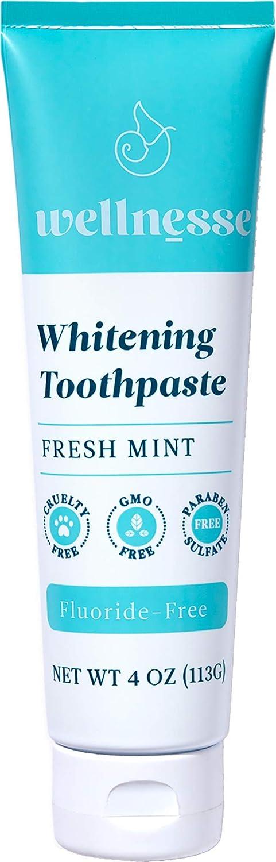 Wellnesse: Whitening Toothpaste - Fresh Mint oz 1 Bombing free shipping Award Tube Cl 4