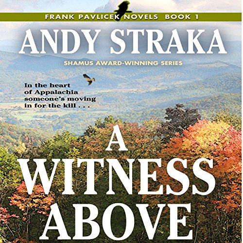 A Witness Above audiobook cover art