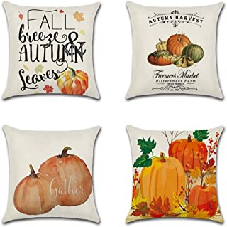 Best fall sofa pillows Reviews