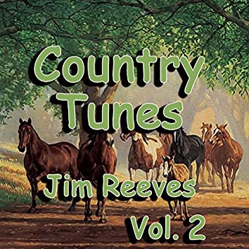 Country Tunes, Vol. 2