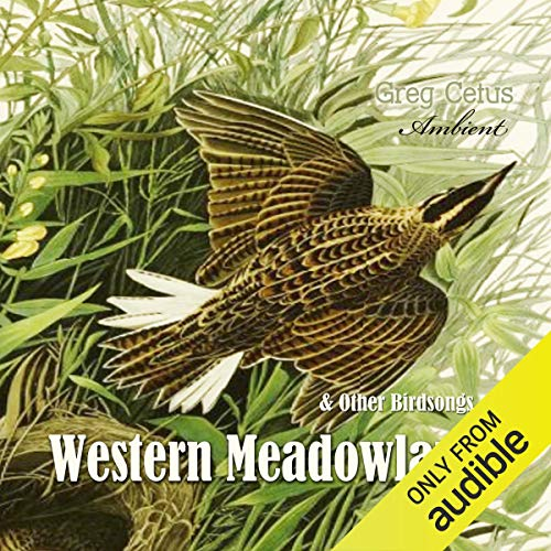 Western Meadowlark and Other Bird Songs Audiobook By Greg Cetus cover art