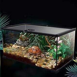 Amazon.es: terrarios para ranas