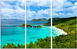 sechars - 3 Pieces Canvas Print Blue Sea Beach Pictures Paintings on Canvas Wall Art US Trunk Bay Virgin Islands Poster Ocean Landscape Artwork for Bedroom Home Decorations Each Piece 12