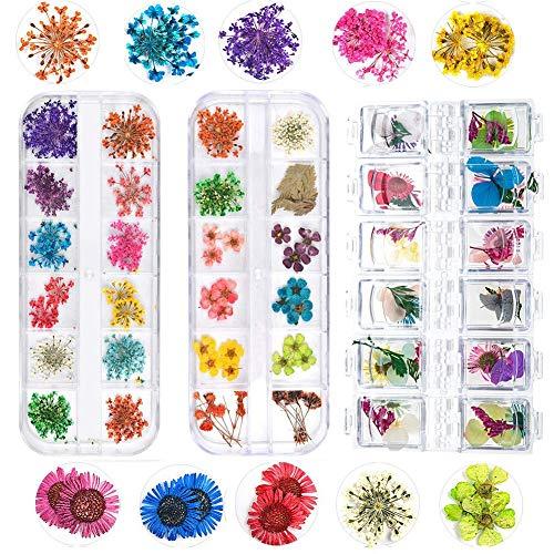 Angelikashalala Lot de 3 boîtes de fleurs séchées pour nail art style pastoral, style frais, style naturel
