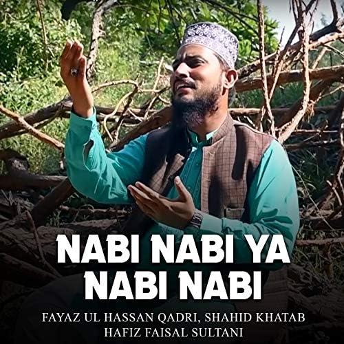 Fayaz Ul Hassan Qadri, Shahid Khatab & Hafiz Faisal Sultani