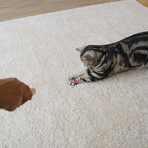 キャティーマン猫用おもちゃじゃれ猫LEDにゃんだろー光線