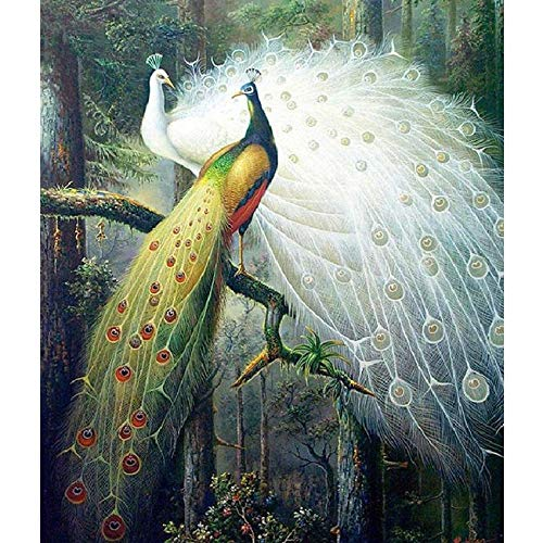 Lororenory kruissteek, kruissteek, borduurwerk, complete set, bos vogel van de liefde pauw motief kruissteek handwerk schilderij geschenk