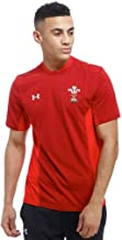 Under Armour 2018-2019 Wales Rugby WRU Training Tee (Red)