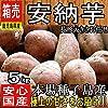 【鹿児島県・種子島産】 あま~い安納芋 約5kg