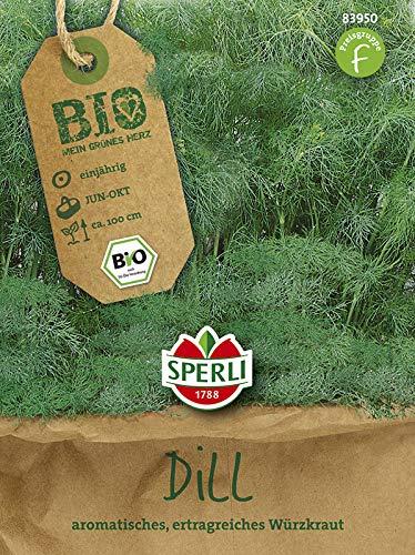 Dill - Bio-Dill Tetra-Dill Goldkrone - Bio-Saatgut von Sperli-Samen