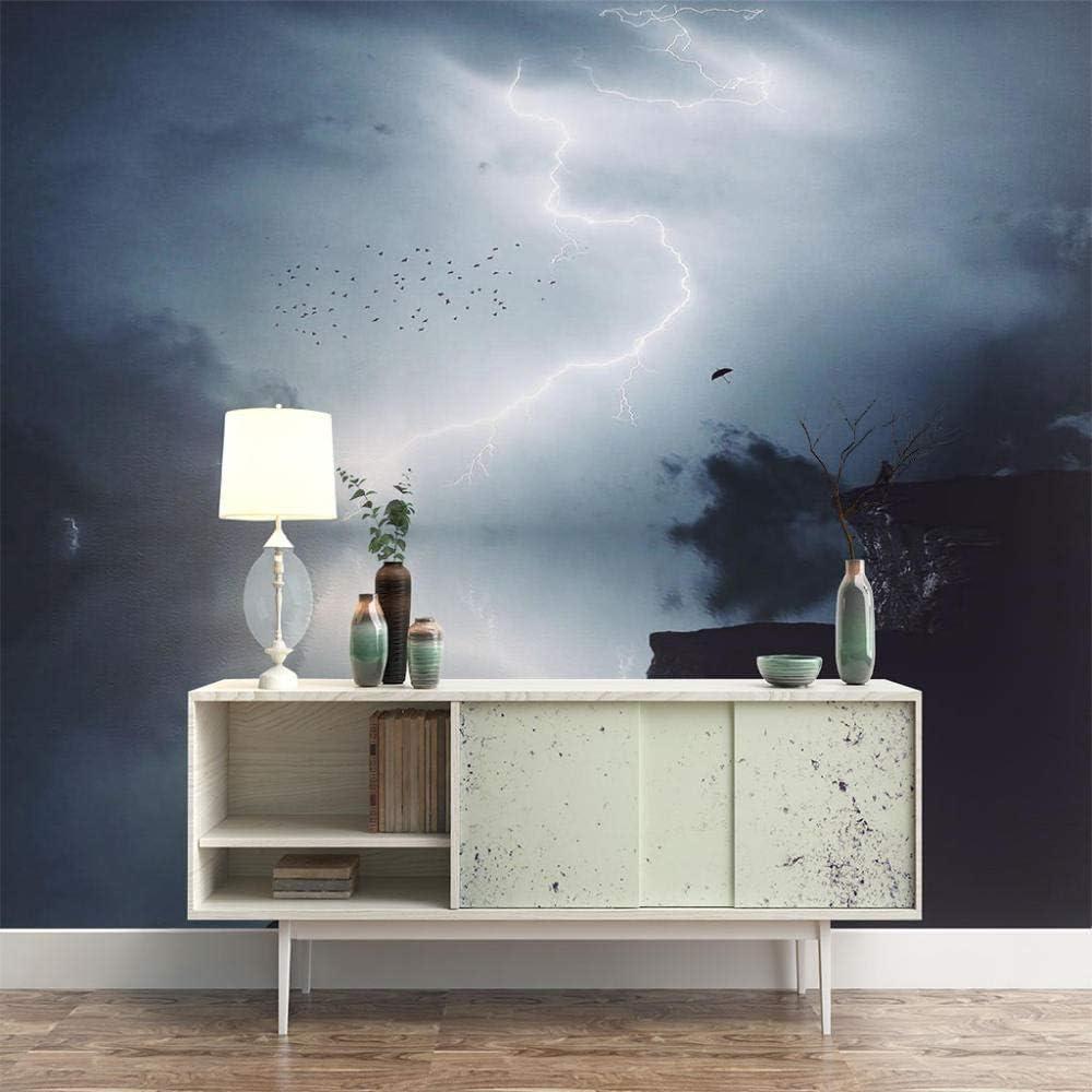 ZXDHNS Wall Murals XXL - Direct store Self-Adh Landscape Cloud Lightning Raleigh Mall Dark