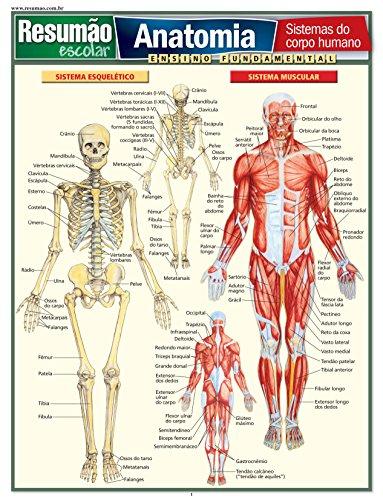 Anatomia. Sistemas do Corpo Humano