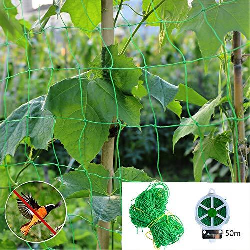 SHDT Garten Netting Mit Kabelbinder-Linie, Pflanze Unterstützung Für Kletterpflanzen, Wein Und Veggie Trellis Net Klettergerüst Garten Zaun-Netz, Anti-Vogel-Netting,1.8 * 3.6M+50M LINE
