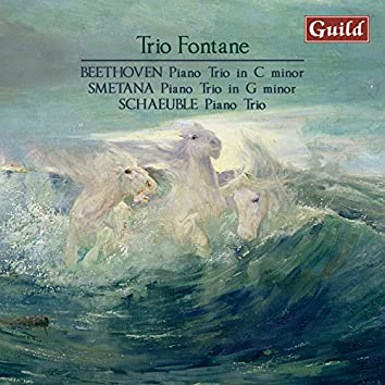 Beethoven: Piano Trio, Op.1 - Smetana: Piano Trio, Op. 15 - Schaeuble: Piano Trio, Op. 45