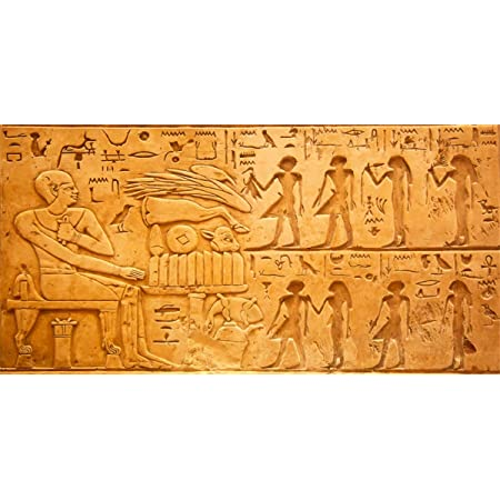 SZZWY 8x8FT Vinyl Photography Background Civilization Ancient Egyptian Mural Foreign Travel Photography Statue Carving Hieroglyph Belief Pharaoh Scene Backdrop Travel Photo Backdrop Studio Prop
