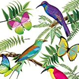 Nouveau Tropical Birds Tovaglioli di Carta, Multicolore, 33 x 33