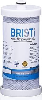 Bristi WF1CB Refrigerator Water Filter Replacement And Fits WFCB, RG 100, NGRG2000, RF-100, RG100, NGRG-2000, 9910, 46-9910 (1 Pack)