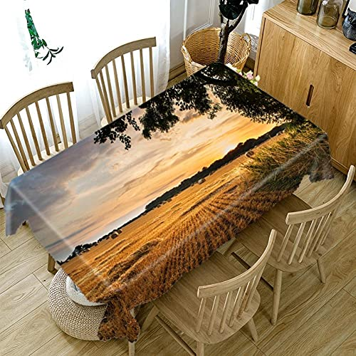 ETDSDVF Paisaje para picnics Mantel Lavable, Mantel Rectangular, Mantel de jardín, decoración de Mesa al Aire libre-200cm x 140cm