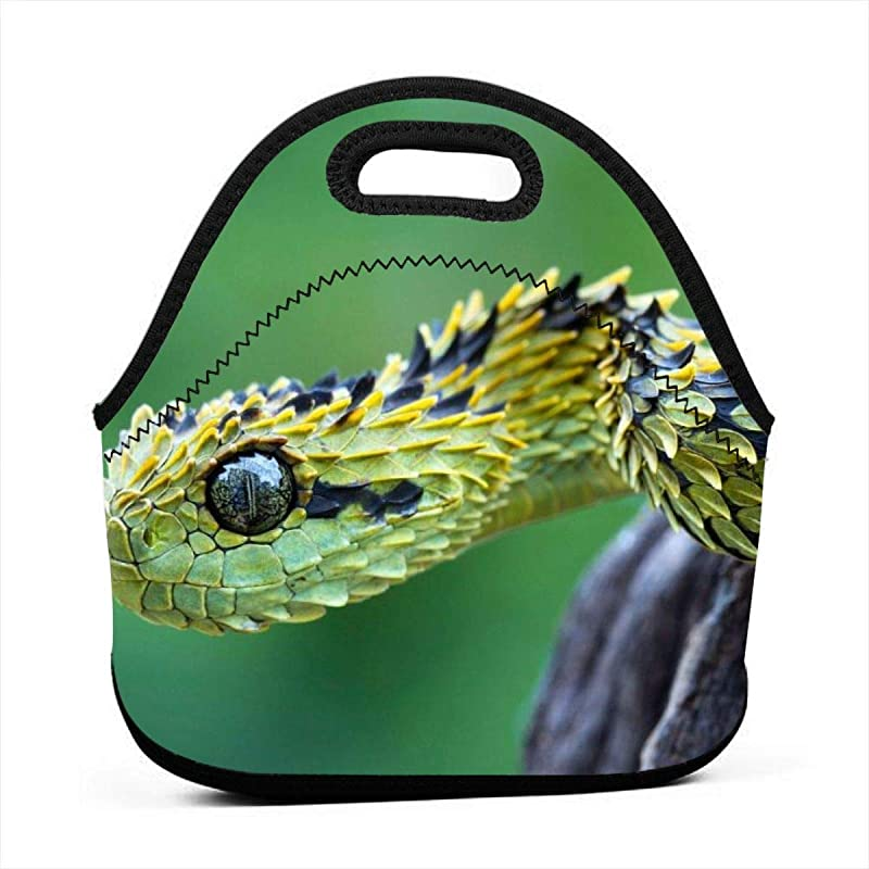 Green Snake Neoprene Lunch Box Reusable Portable Lunch Lightweight Lunch Bag For Womens Girls And Mens Boys