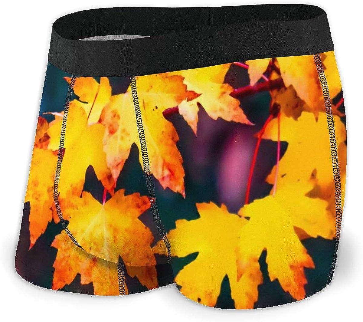 Randolph Wordsworth Mens Boxer Briefs Marvellous Fall Colours Autumn Breathable Underwear