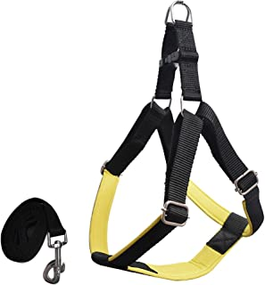 Pawzone Durable & Adjustable Yellow Body Harness with Leash for Dogs(3/4 Inch)