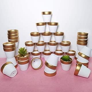 Best succulent terracotta pots Reviews
