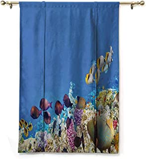 SEMZUXCVO Polyester Roman Curtain Ocean Decor Collection Multicolored Fish Schools Swimming Between Submerged Ancient Coral Reefs Nature Marine World Print W48 x L64 Blue Yellow Lilac