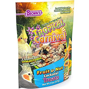 F.M. Brown's Tropical Carnival Fruit and Nut Cockatiel Conure and Lovebird Pet Treat, 8-Ounce by F.M. Brown's