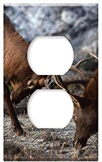 Switch Plate Outlet Cover - Bull Elk Sparring Wildlife Fighting Nature
