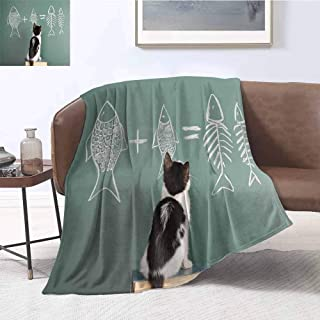 Mademai Kitten Plush Weave Blanket Cat Doing Arithmetic with Fish Problem on a Blackboard for Kitty to Solve Fishbone Cotton Plush Blanket 60