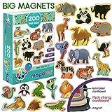 MAGDUM Imanes Animales Zoo de Pizarra Infantil para niños - Imanes...