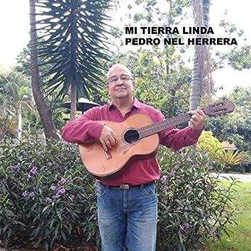 Mi Tierra Linda