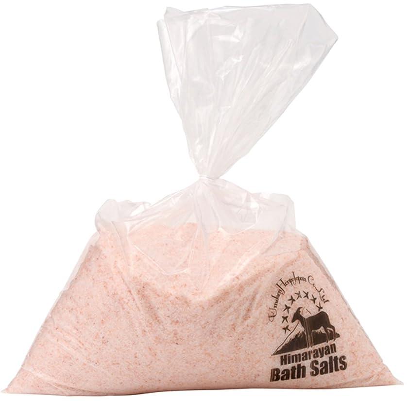 感情問い合わせバーゲンヒマラヤ岩塩 バスソルト ピンク あら塩 10kg