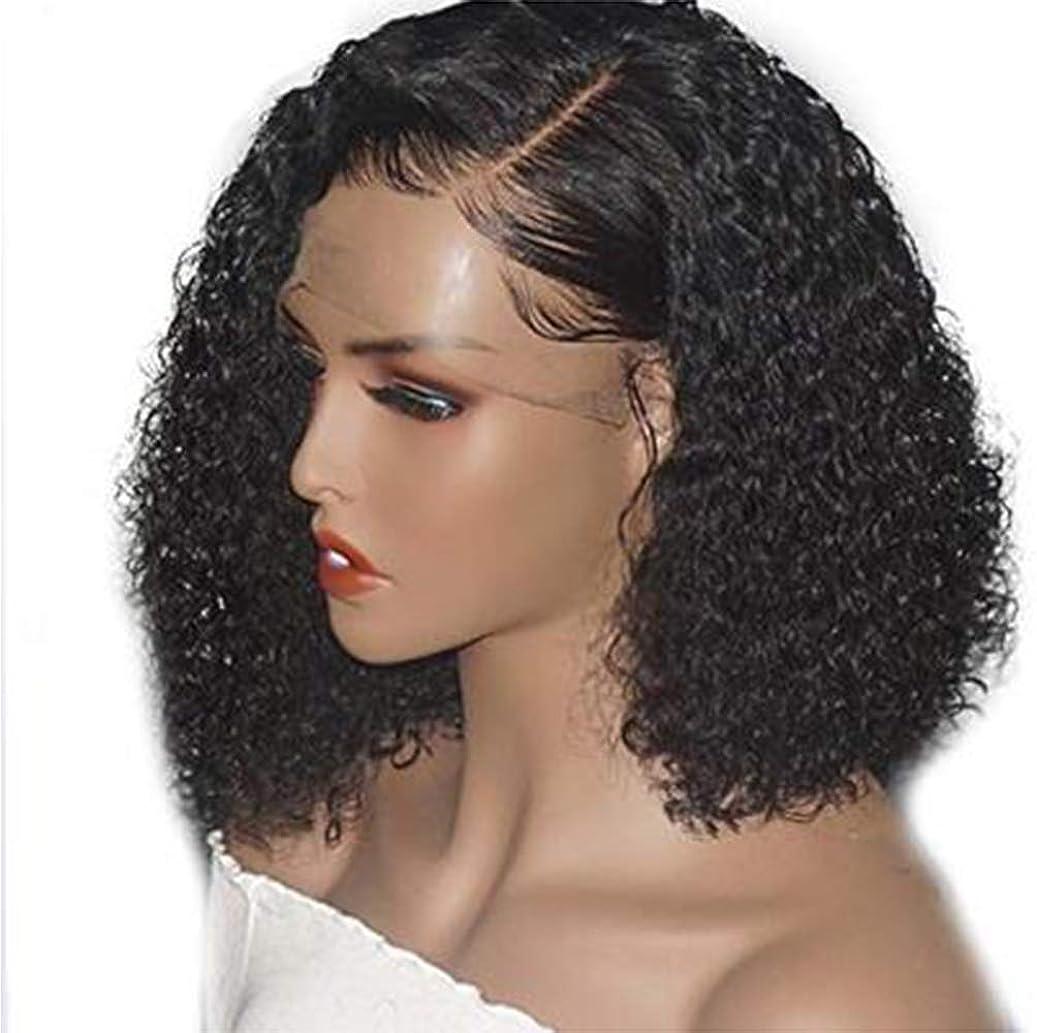 シュガーホーム賛美歌女性のブラジルのRemy耐熱合成長さの非常に巻き毛のウェーブのかかった髪のパーティーコスチュームウィッグ黒14インチ