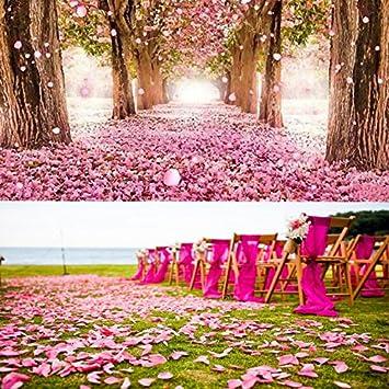 S-Chanson P/étales de Rose en Soie Confetti D/écoration pour Mariage//F/ête//No/ël//Saint Valentin 2000 Pi/èces Rouge Jaune