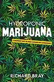 Hydroponic Marijuana: 3 Foolproof Ways to Grow Cannabis with Hydroponics (Urban Homesteading)