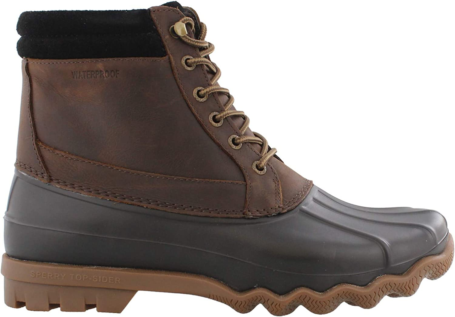 Sperry Unisex-Adult Brewster Ranking TOP5 Rain Boot Recommended