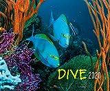 Dive 2020 - F. Naglschmid c/o Verlag S. Naglschmid