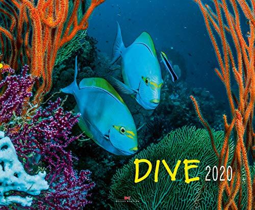 Dive - Kalender 2020 - Delius-Klasing-Verlag - Tauchkalender - Wandkalender Wassersportler - 56 cm x 45,5 cm